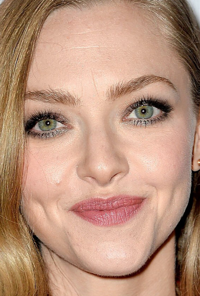 Amanda Seyfried, Animal Society Best Friends Benefit, 2019