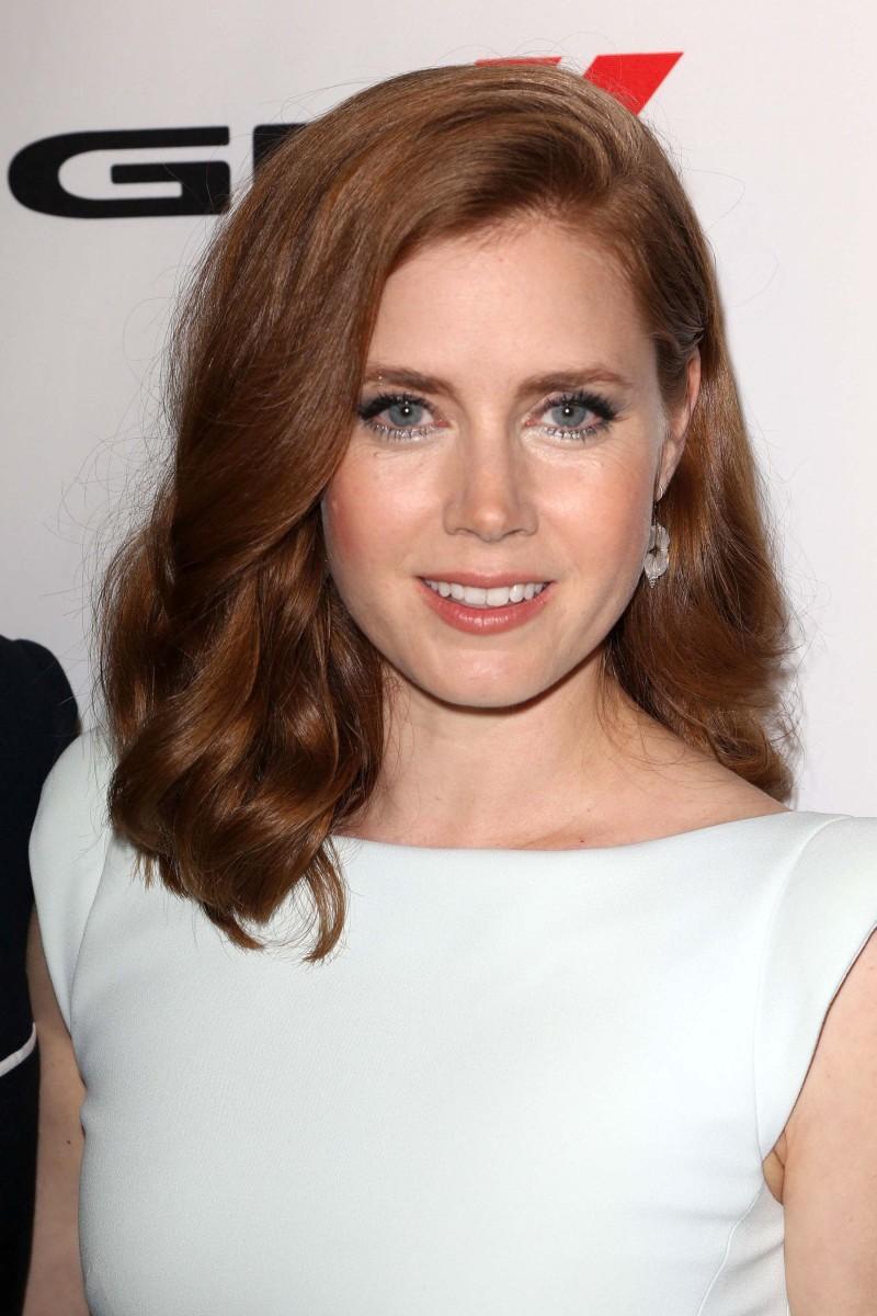 Amy Adams Hollywood Film Awards 2013